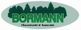 Website Logo von Bormann
